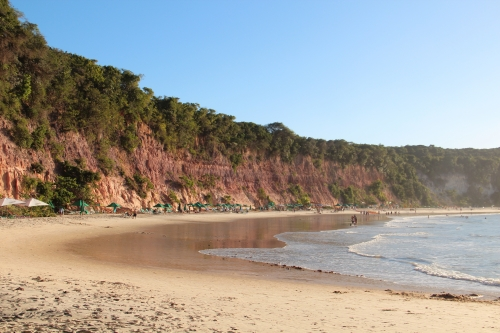 Dolphins Bay - The Curral beach