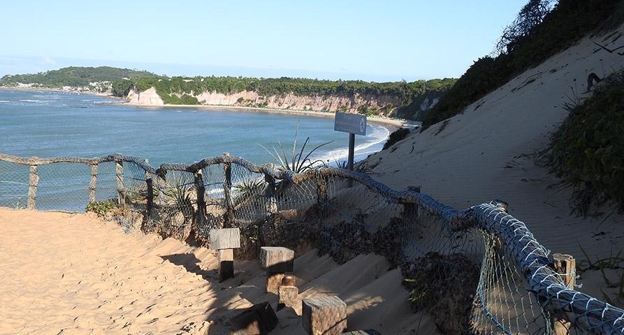 Conozca el Santuario Ecológico de la Playa de Pipa (RN)