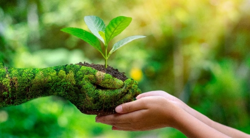 World Environment Day - June 05